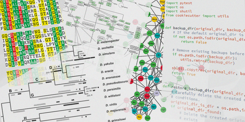 Bioinformatics / Comparative Genomics